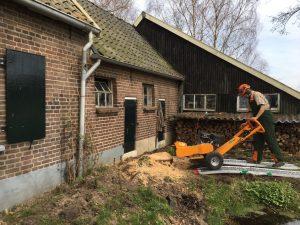 Boomstronk verwijderd in Beemte Broekland