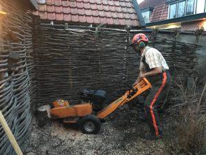Boomstronk verwijderen in Amersfoort